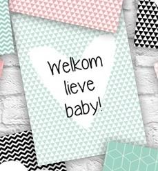 kaartje welkom lieve baby